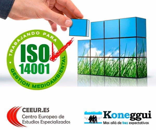 NORMA+ISO 14001 PDF DOWNLOAD
